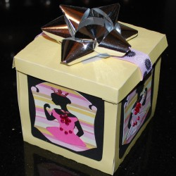 Birthday Princess Box2