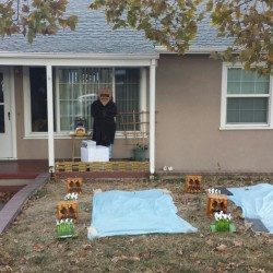 Mine craft Halloween 2015