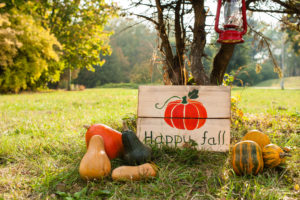 decor outdoors with pumpkins and details