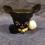 Black Cat White Paw